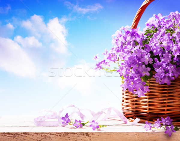bluebells spring flowers in a basket Stock photo © Konstanttin