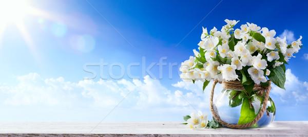 Natuur lentebloemen blauwe hemel hemel bloem zon Stockfoto © Konstanttin