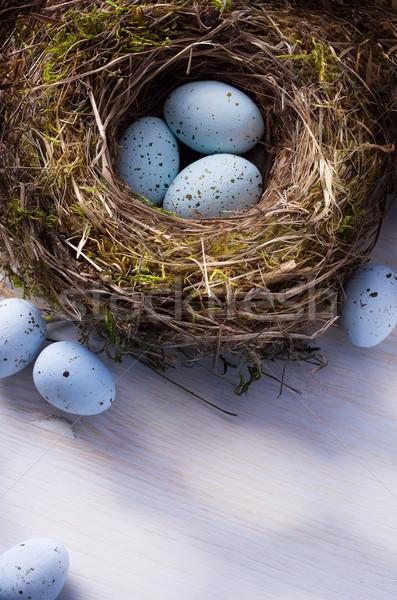 Művészet húsvét húsvéti tojások fészek Stock fotó © Konstanttin
