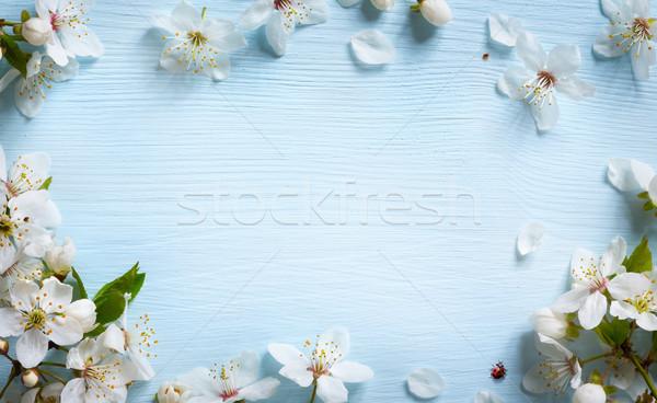 Művészet tavasz friss virág kék Stock fotó © Konstanttin