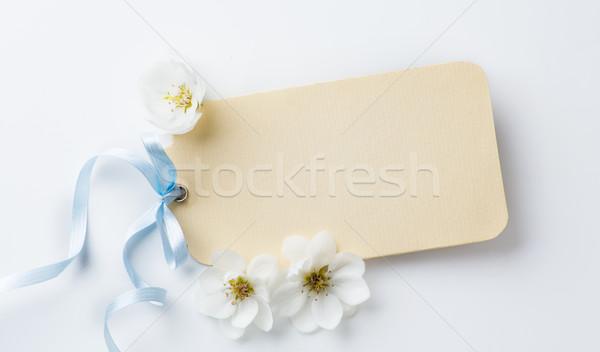 Művészet anyák nap fehér virág tavasz Stock fotó © Konstanttin