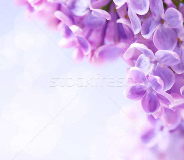 Art  lilac flowers background  Stock photo © Konstanttin