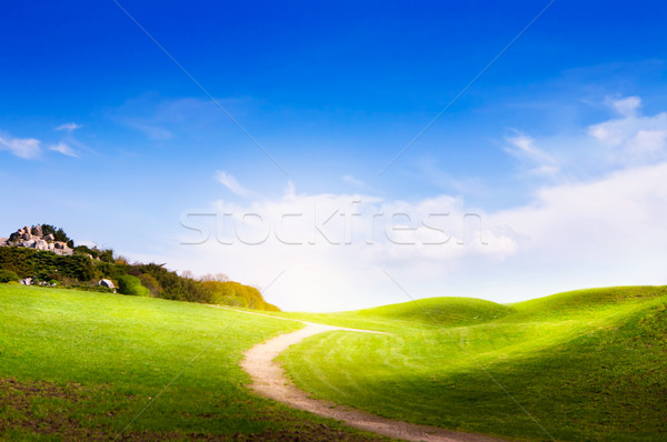 Tavasz tájkép zöld fű út felhők Stock fotó © Konstanttin