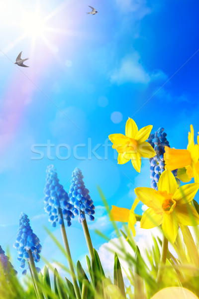 art Easter background with fresh spring flowers Stock photo © Konstanttin
