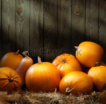 orange gourd lying on the grass on  dark background Stock photo © Konstanttin