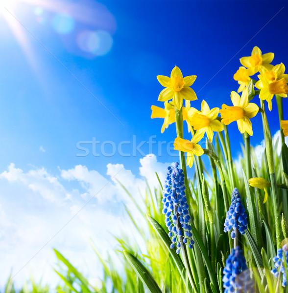 Művészet húsvét friss tavaszi virágok égbolt virág Stock fotó © Konstanttin
