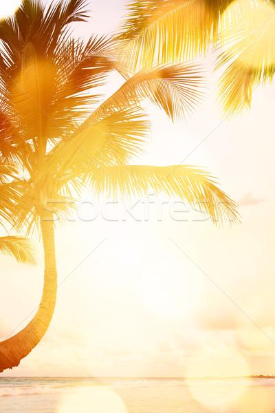 Stockfoto: Kunst · mooie · zonsopgang · tropisch · strand · strand · landschap