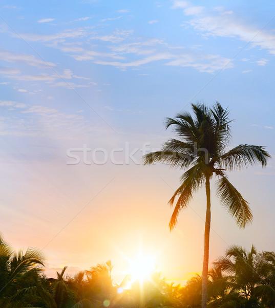 Vreedzaam tropische zonsondergang zon landschap Stockfoto © Konstanttin