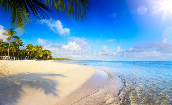 лет тропический пляж мирный отпуск солнце фон Сток-фото © Konstanttin