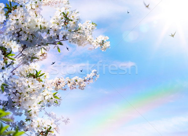 abstract floral spring background Stock photo © Konstanttin