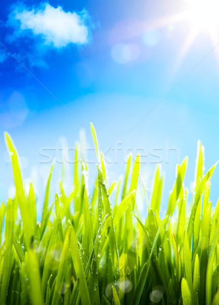Művészet természet tavasz friss reggel harmat Stock fotó © Konstanttin