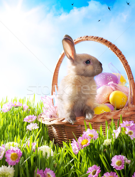 Easter basket with decorated eggs and the Easter bunny Stock photo © Konstanttin