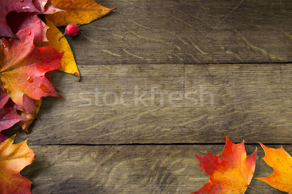 Stock photo: yellow  autumn leaves on background old wood