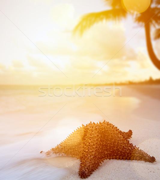 Művészet vakáció trópusi tengerpart naplemente tájkép háttér Stock fotó © Konstanttin
