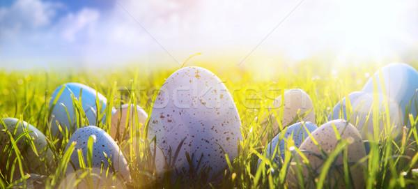 Művészet húsvéti tojások friss fű kék ég virág Stock fotó © Konstanttin