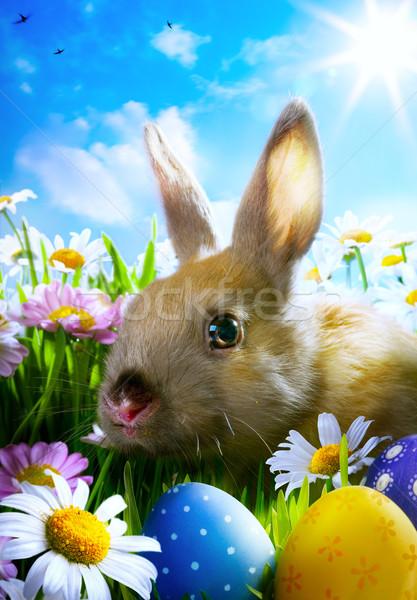 Сток-фото: искусства · Пасху · ребенка · кролик · пасхальных · яиц · весны