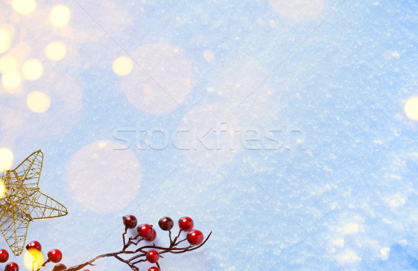 Christmas composition; Christmas decoration; holly berry and hol Stock photo © Konstanttin