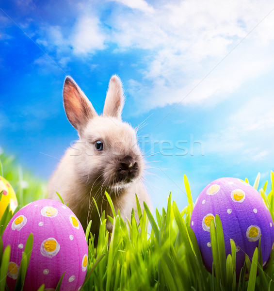 Little Easter bunny and Easter eggs on green grass  Stock photo © Konstanttin