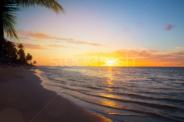 Foto stock: Arte · férias · de · verão · oceano · praia · belo · nascer · do · sol