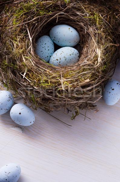 art Easter background with Easter eggs on the nest Stock photo © Konstanttin