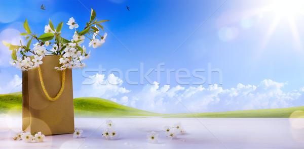 Kellemes húsvétot tavaszi virágok tavasz tájkép égbolt virág Stock fotó © Konstanttin