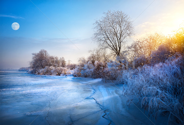 beautiful winter background; winter landscape On A Hoar Frost Stock photo © Konstanttin