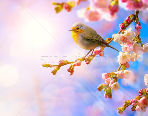 Absztrakt tavasz tájkép természet virágmintás rózsaszín Stock fotó © Konstanttin