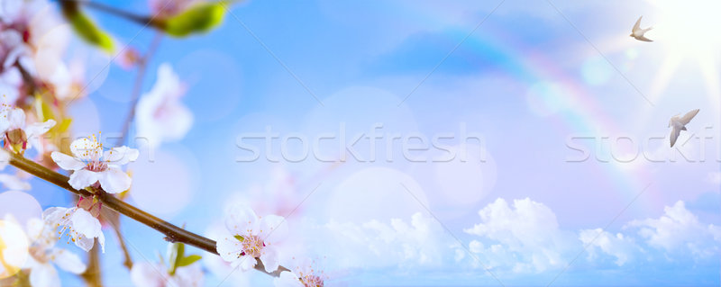 art Spring flower background; Easter landscape Stock photo © Konstanttin
