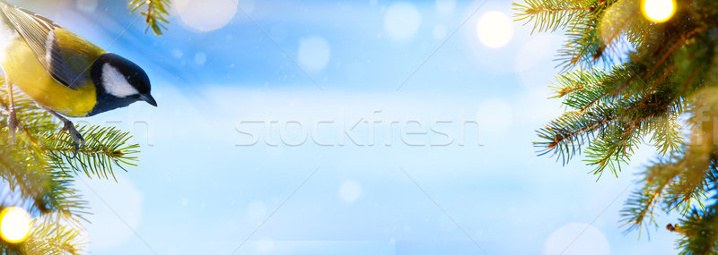 Blue winter Christmas background with trees branch and holidays Stock photo © Konstanttin