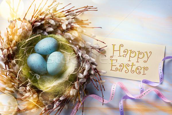 Művészet húsvét húsvéti tojások tavasz fa üres kártya Stock fotó © Konstanttin