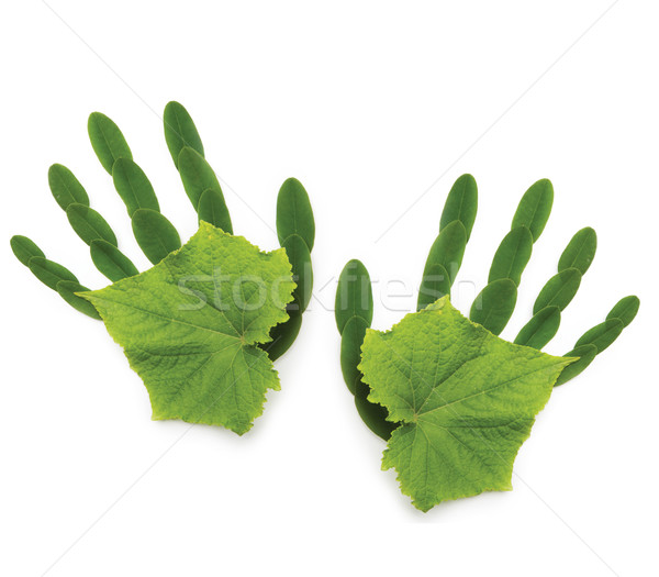 art greenpeace spring background Ecological symbol  hand of natu Stock photo © Konstanttin