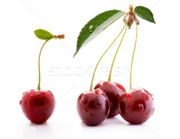 art ripe cherries isolated on white background Stock photo © Konstanttin
