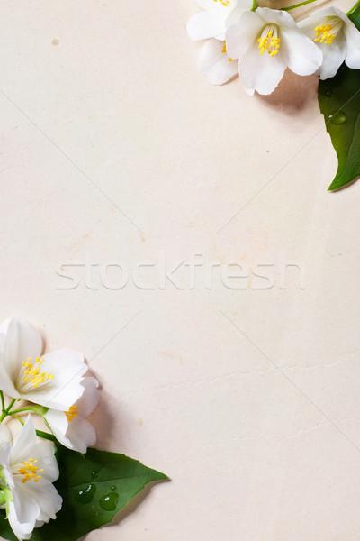 Kunst lentebloemen frame oud papier bloemen grens Stockfoto © Konstanttin