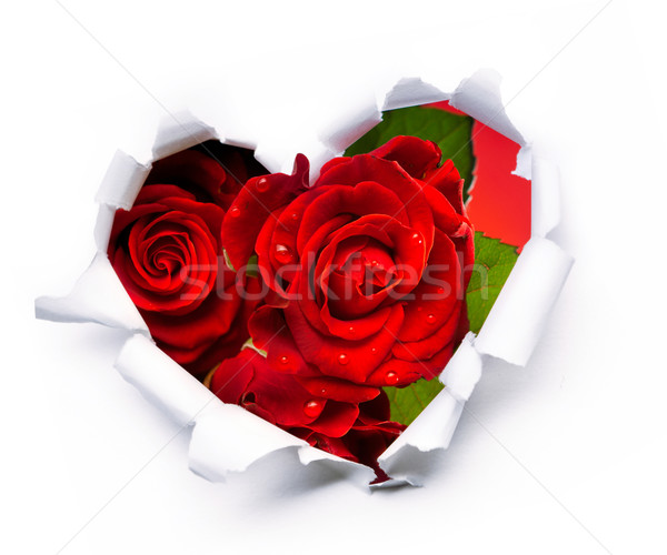 Art bouquet of red roses and the paper hearts on Valentine's Day Stock photo © Konstanttin