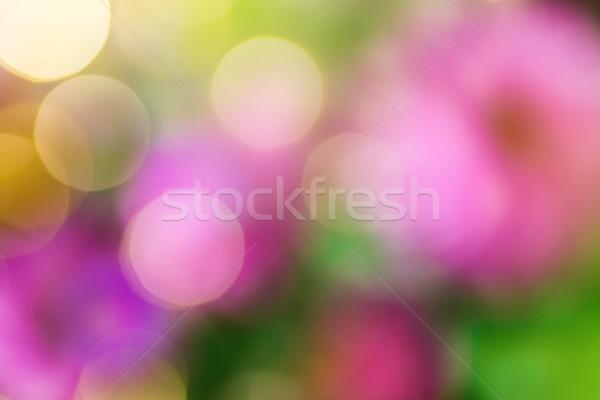 весны цветок природы фон лет Сток-фото © Konstanttin