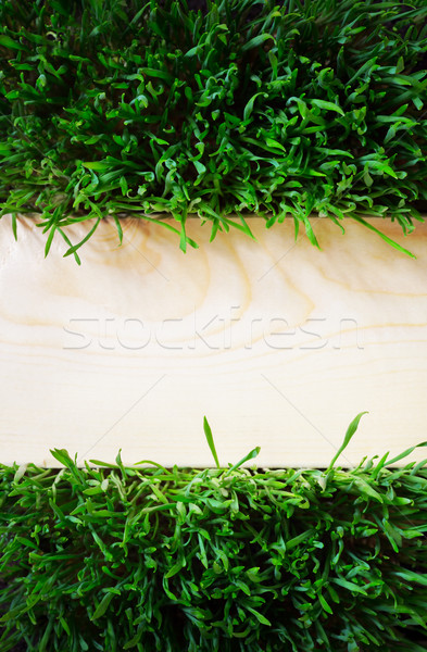 art natural background grass and wood surfaces Stock photo © Konstanttin