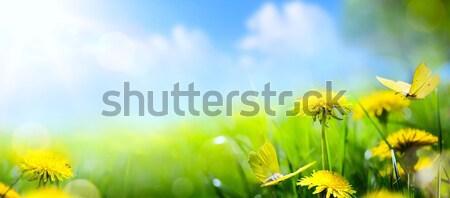 Művészet absztrakt virágmintás tavasz nyár friss Stock fotó © Konstanttin