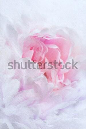 Vintage flores aquarela pinturas flor papel Foto stock © Konstanttin