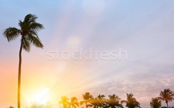 Foto stock: Pacífico · tropical · pôr · do · sol · sol · paisagem