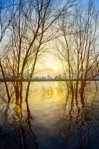 art spring water background Stock photo © Konstanttin