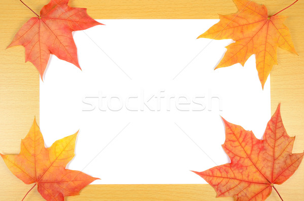 Stock photo: autumn leaves and sheet of paper