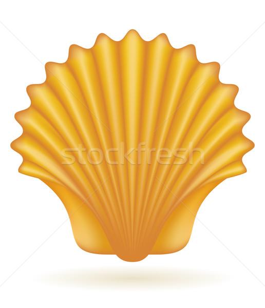 shell sea vector illustration Stock photo © konturvid