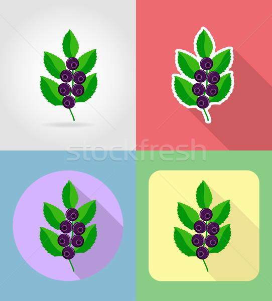 áfonya gyümölcsök szett ikonok árnyék vektor Stock fotó © konturvid