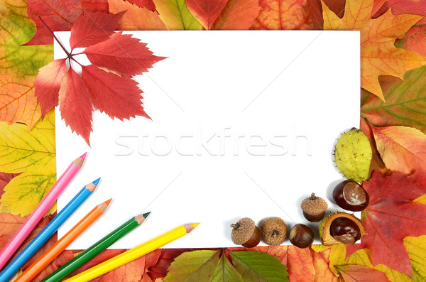 autumn leaves pencils and sheet of paper Stock photo © konturvid