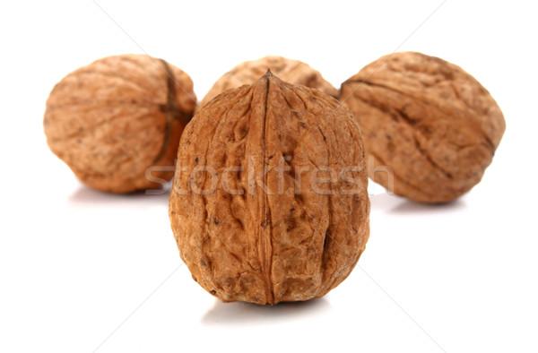 walnut Stock photo © konturvid