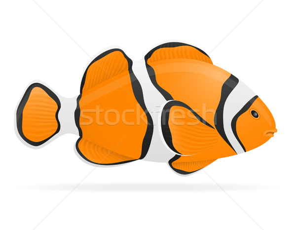 aquarium fish vector illustration Stock photo © konturvid