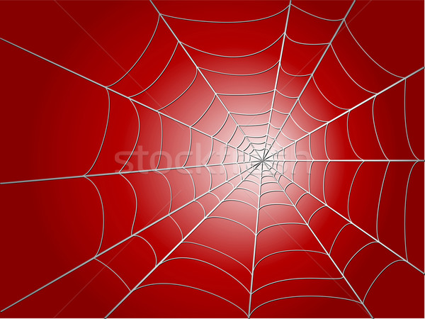 spider wed Stock photo © konturvid