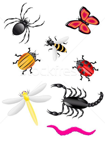Insecten kleuren natuur groep spin bee Stockfoto © konturvid