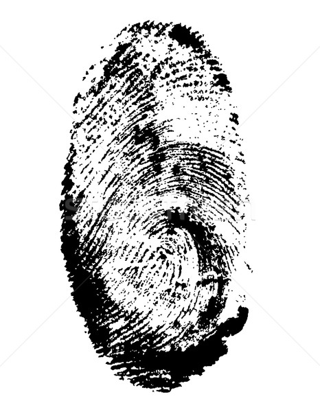 fingerprint black vector illustration Stock photo © konturvid