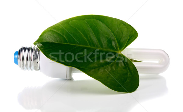 lightbulb and green leaf Stock photo © konturvid